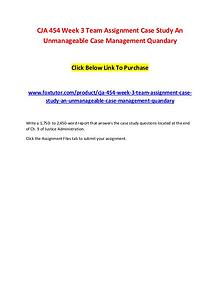 CJA 454 Week 3 Team Assignment Case Study An Unmanageable Case Manage