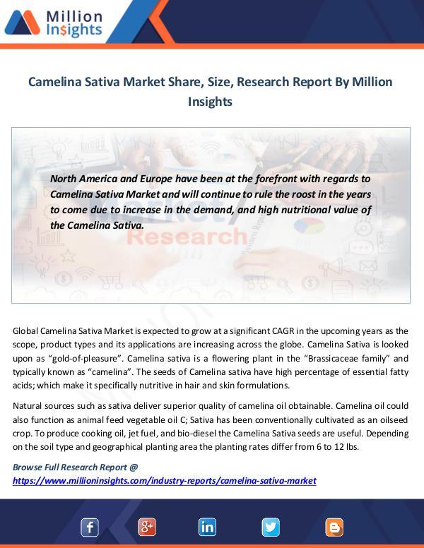 Camelina Sativa Market
