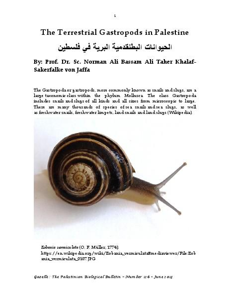 Gazelle : The Palestinian Biological Bulletin (ISSN 0178 – 6288) . Number 126, June 2015, pp. 1-16.