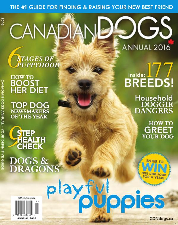 Canadian Dogs Annual 2016