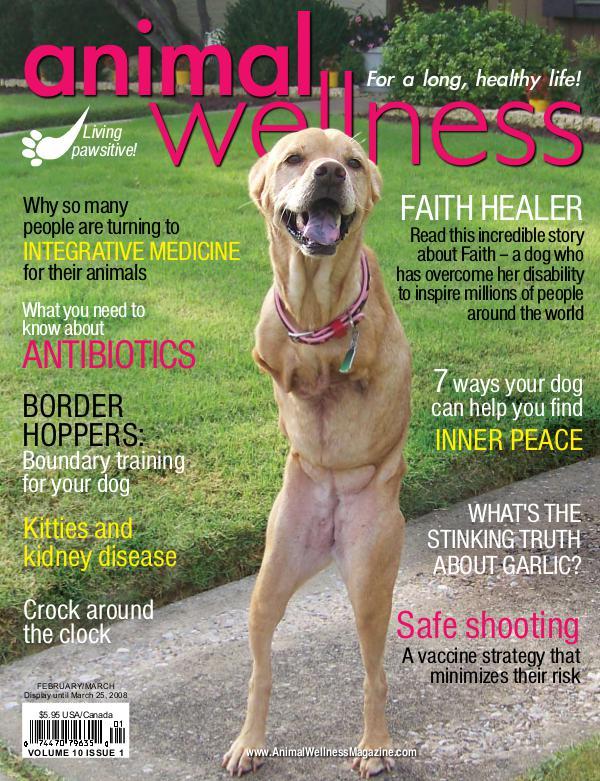 Animal Wellness Back Issues Feb/Mar 2008
