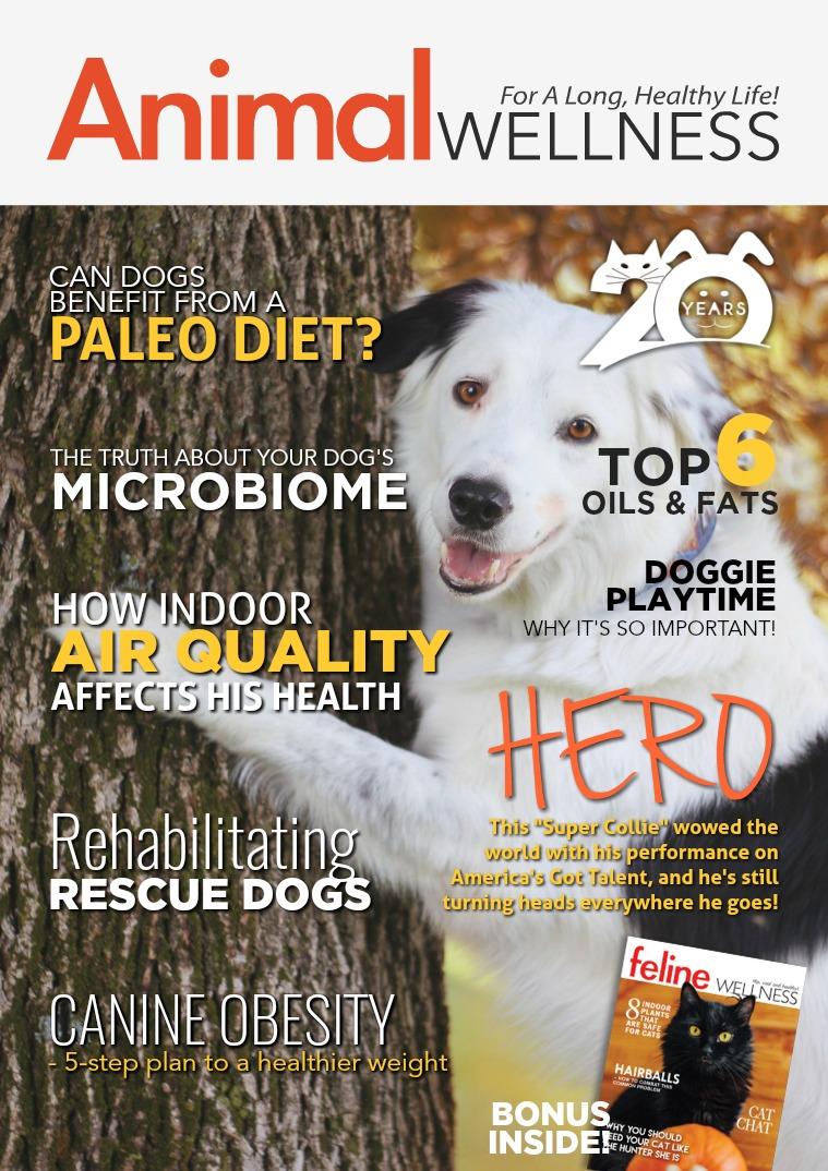 Animal Wellness Magazine Oct/Nov 2018