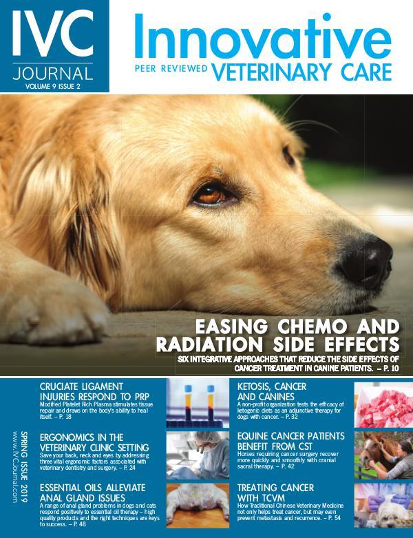 IVC Journal V9I2 Spring 2019