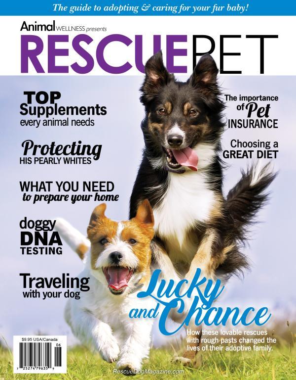 Advertising Magazine Samples Rescue Pet