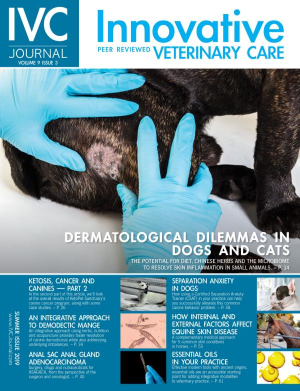 IVC Journal V9I3 Summer 2019