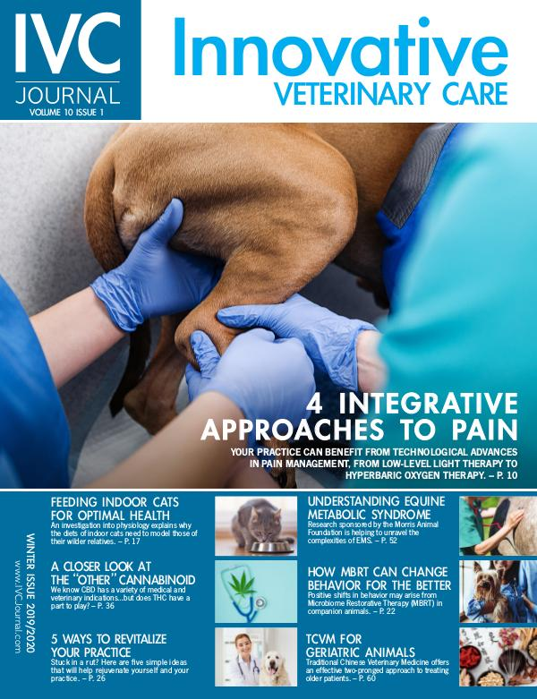 IVC Journal V10I1 Winter 2019-20