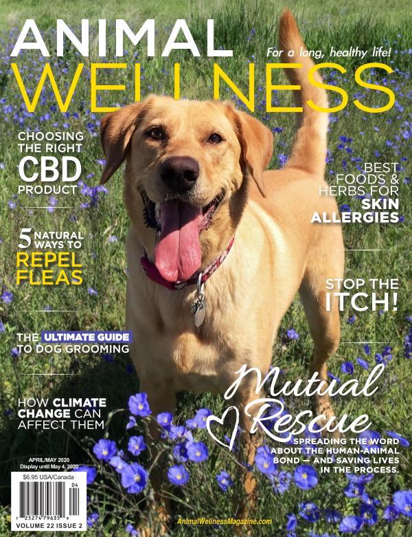 Animal Wellness Apr/May 2020