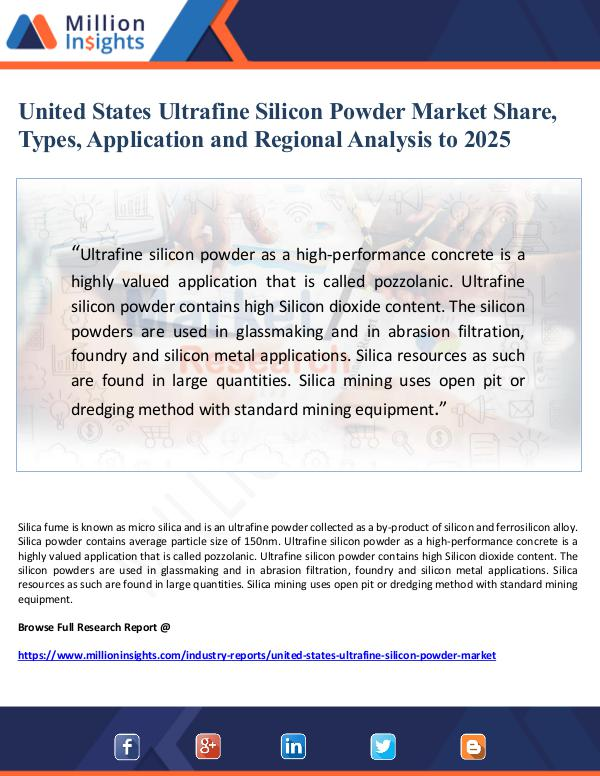 Market Giant United States Ultrafine Silicon Powder Market Shar