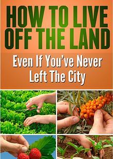 Best survival foods and kits-Best Prepper food-Llive off the land