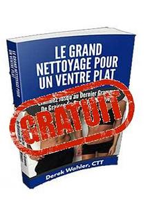 LE GRAND NETTOYAGE POUR UN VENTRE PLAT PDF GRATUIT