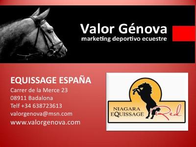 Hipodromos y caballos - Racetracks and horses Equisssage, terapia para la salud y rendimiento de