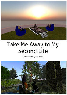 Second Life Areas of Interest