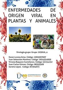 Virología - Revista Interactiva