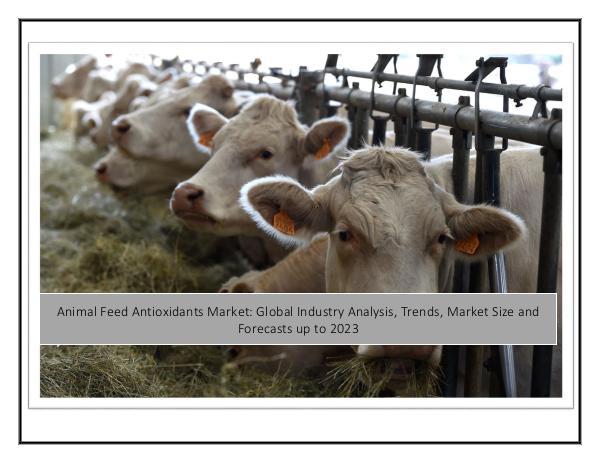 Animal Feed Antioxidants Market
