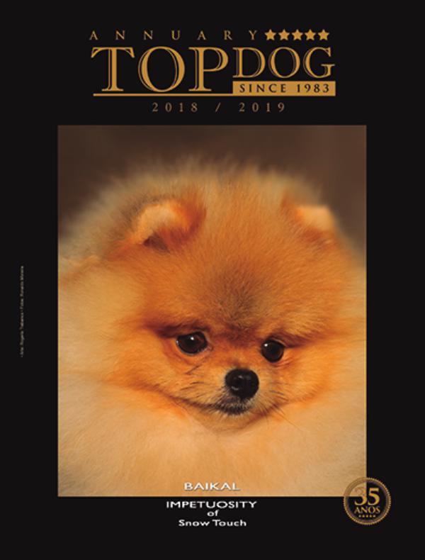 topdoga12019 topdog2019a