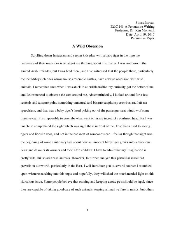 My Writing Portfolio A Wild Obsession