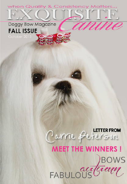 Exquisite Canine by Doggy Bow Oct. 2013
