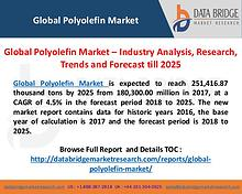 Global Polyolefin Industry Analysis and Forecast 2025