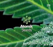 Atomik Seeds graines de cannabis féminisées et autofloraison