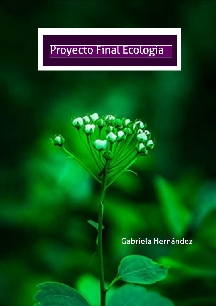 Proyecto de Ecología Vol 1