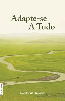 Adjust Everywhere (In Portuguese)