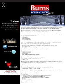 Burns Insurance Group Newsletter