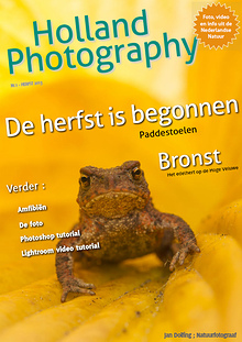 Dutch Nature Photography