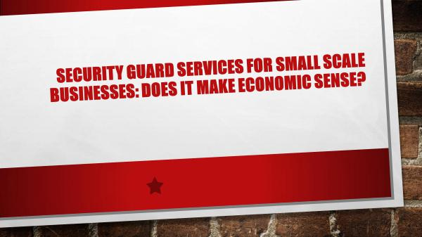 Northern Force Security Security Guard Services for Small Scale Businesses