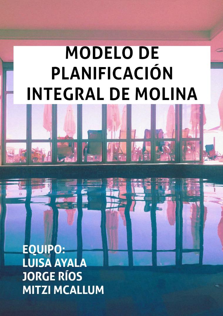 Modelo de planificación integral de Molina 1