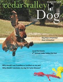 Cedar Valley Dog