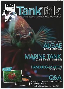 Tank Talk Magazine October 2013