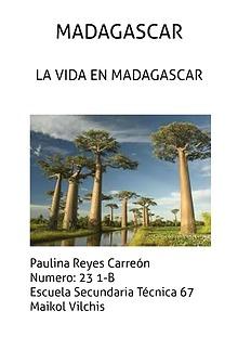 LA VIDA EN MADAGASCAR