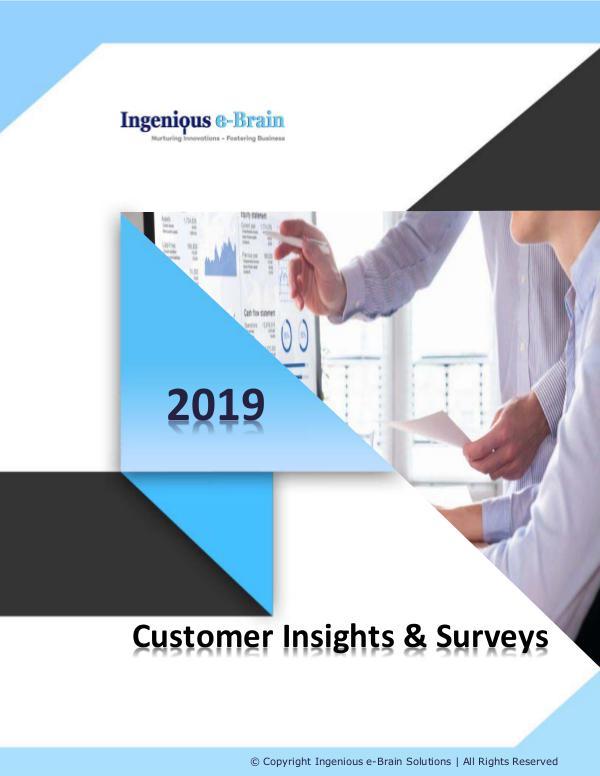 Business Intelligence – Consumer Insights and Surveys Customer Insights & Surveys