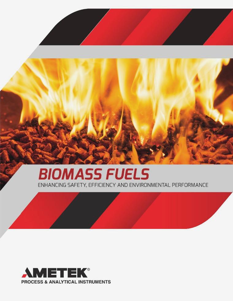 Biomass Fuels 1