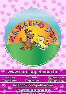 Catalogo Narciso PEt