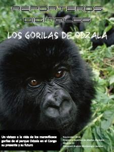 Gorilas en peligro 01