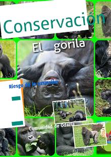 Conservaciòn