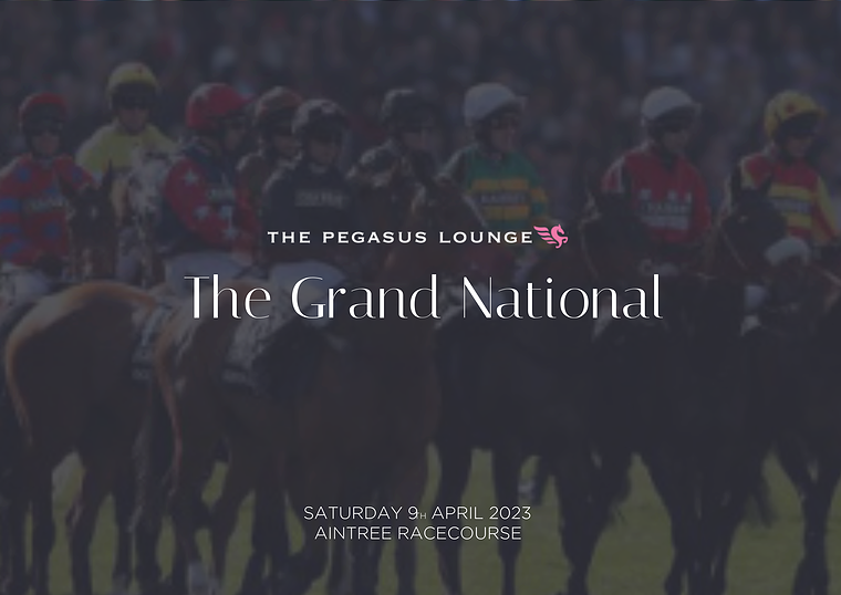 Grand National Horse Racing   Corporate Hospitality