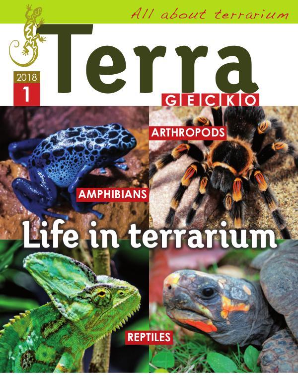 Terra Gecko Magazine : All about terrarium 2018/1