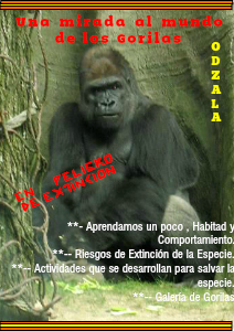 El Gorila de Odzala 1 Noviembre 2013
