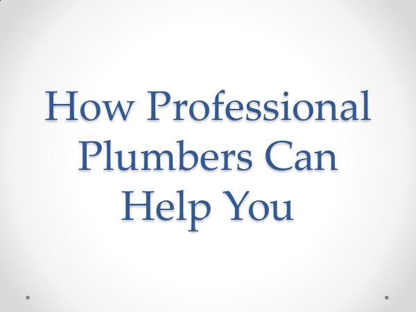 How Professional Plumbers Can Help You