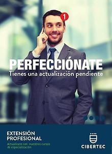 Extensión Profesional