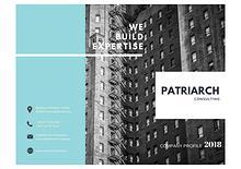 Patriarch Consulting - Company Profile