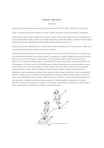 Nastavna Jedinica: Preskok - Konj 120cm November. 2013