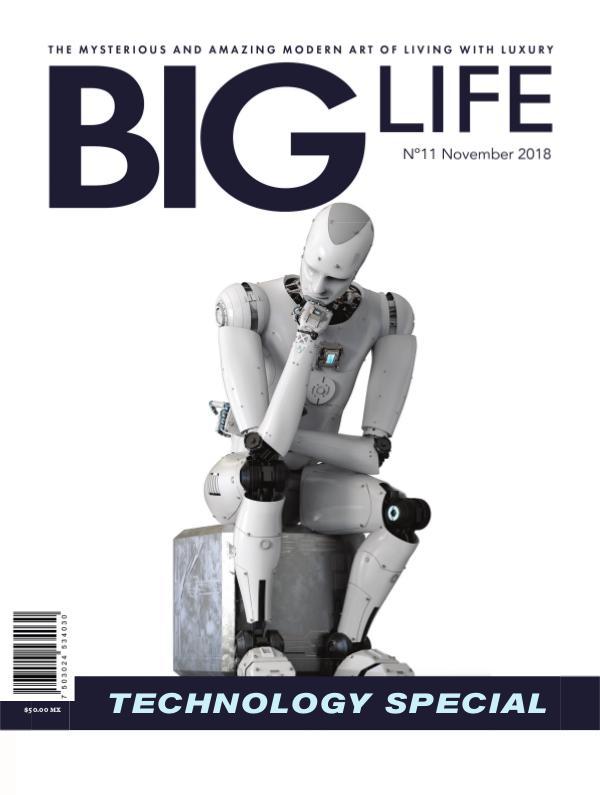 BIG LIFE Magazine Edition N°11 - November