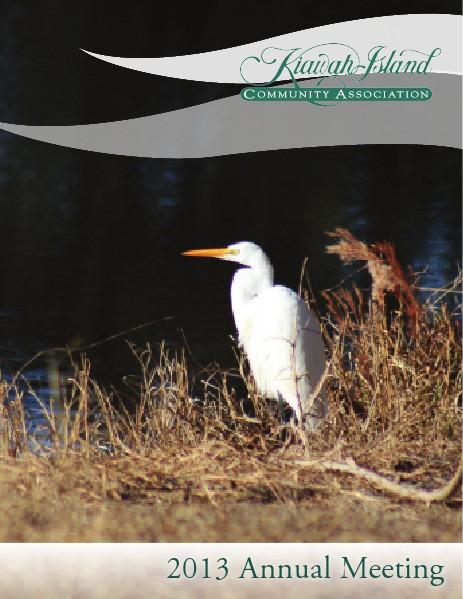 KICA Annual Reports 2013