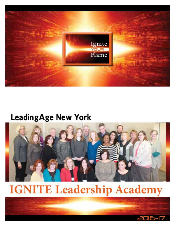 IGNITE Leadership Academy Action Learning Project 2016-17