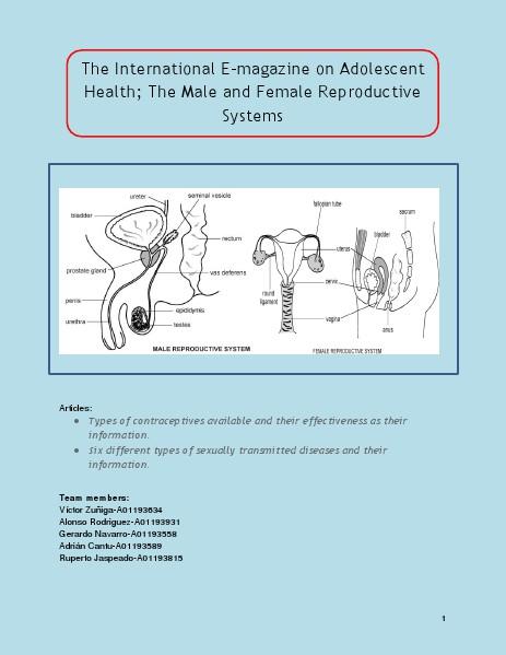 The International E-magazine on Adolescent Health; The Male and Female Reproductive Systems E-Magazine Reproductive System