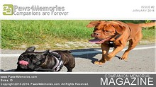 Paws4Memories Magazine